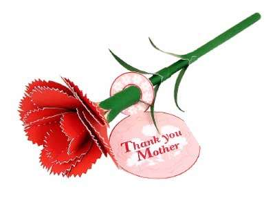 50__400x360_mothers_day_carnation_flower_papercraft