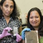 Crushed-silicon-can-create-a-smartphone-battery-that-lasts-three-times-longer-than-current-cells